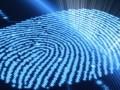 biometria nec