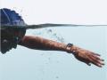 Apple Watch smartwatches relógios inteligentes desporto vestíveis